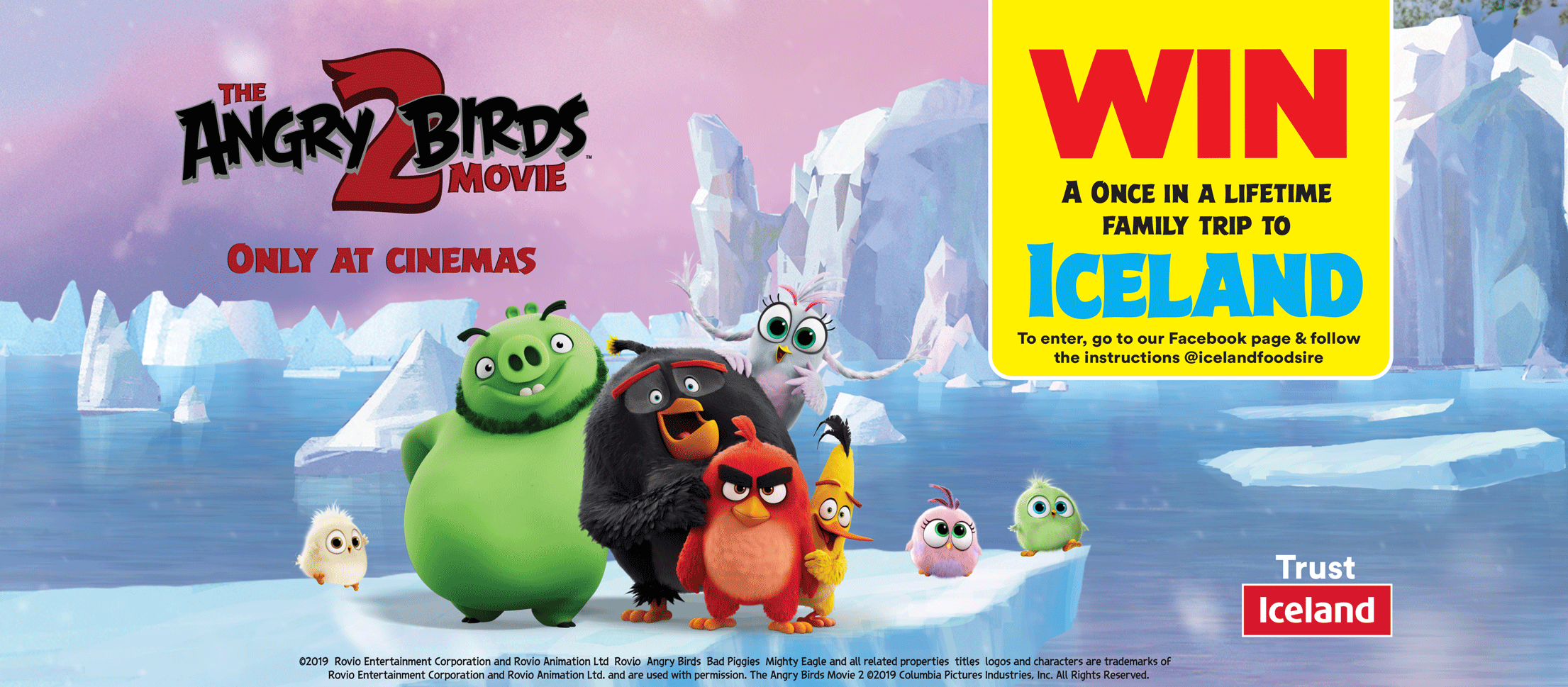 Angry Birds 2 Movie Competition Banner